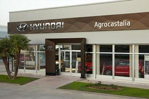 Agrocastalia